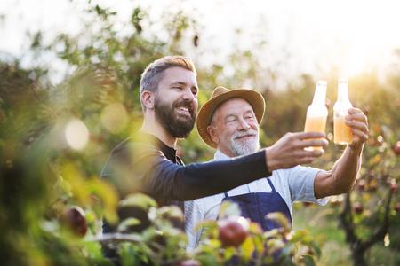 Ein älterer Mann mit erwachsenem Sohn, der im Herbst Flaschen mit Apfelwein im Apfelgarten hält. Standard-Bild