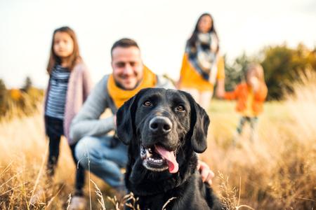 Una familia joven con dos niños pequeños y un perro en un prado en la naturaleza otoñal. Foto de archivo