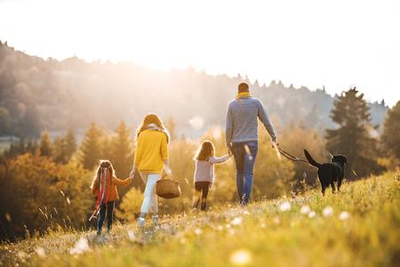 Een achteraanzicht van een gezin met twee kleine kinderen en een hond op een wandeling in de herfstnatuur. Stockfoto