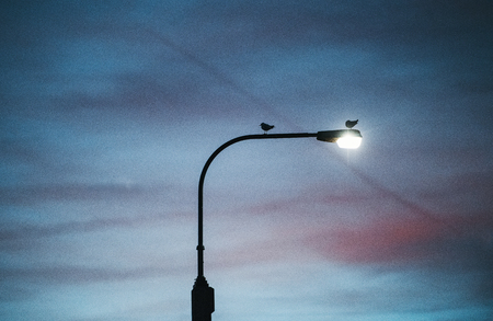 A street light against cloudy twilight background.