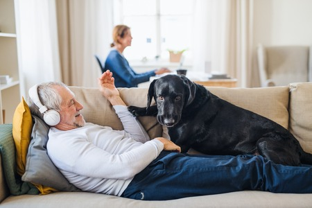 A happy senior couple indoors with a pet dog at home, using laptop and headphones.