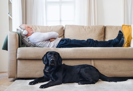 A happy senior man lying on a sofa indoors with a pet dog at home, listening to music.