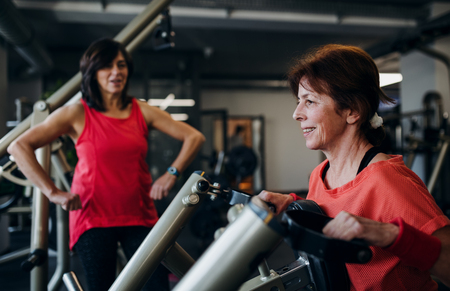 Two cheerful senior women in gym doing strength workout exercise.