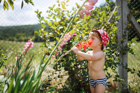 A small boy with a hat standing outdoors in garden in summer.