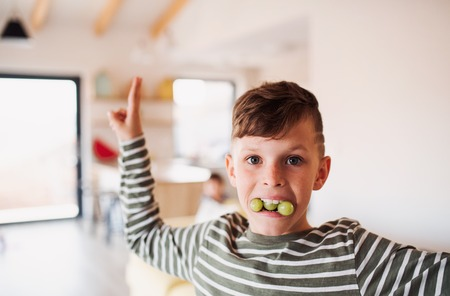 A portrait of small boy eating grapes indoors, having fun. Copy space.