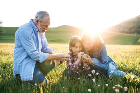 Couple de personnes âgées avec petite-fille à l'extérieur dans la nature printanière au coucher du soleil.