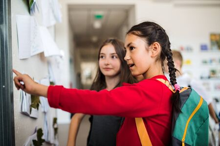 Two cheerful small school girl friends with bags standing and looking at notice board. 版權商用圖片