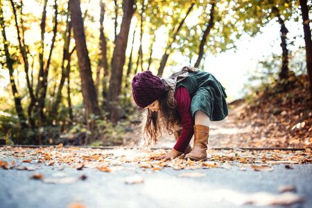 A small toddler girl playing in forest in autumn nature, playing.