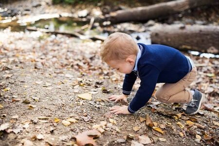 Small toddler boy in autumn forest, playing. Copy space. Фото со стока