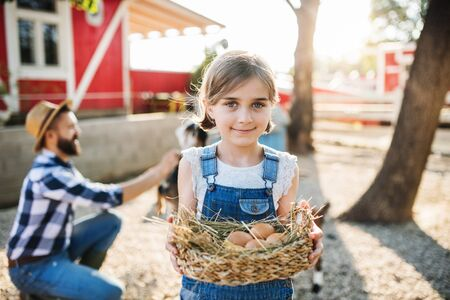 A small girl with father outdoors on family farm, holding eggs.