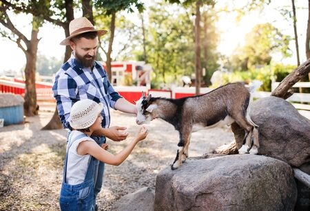 A father with small daughter outdoors on family farm, feeding animals.