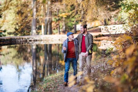 Senior father and his son walking in nature, talking. Stockfoto