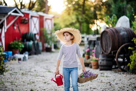 A front view of small girl walking outdoors on family farm, holding plants.