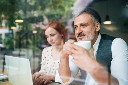 Man and woman having business meeting in a cafe, using laptop.