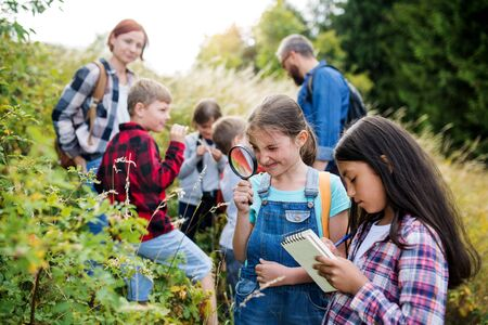 Group of school children with teacher on field trip in nature, learning science.