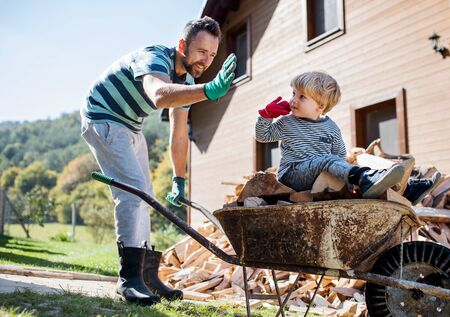 A father and toddler boy outdoors in summer, putting firewood in wheelbarrow.