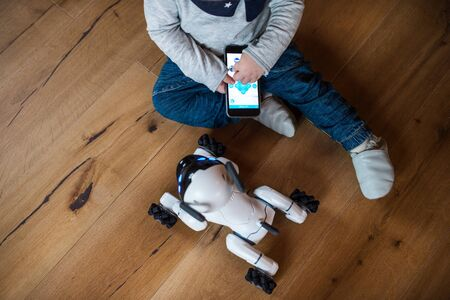 A midsection of toddler boy sitting on the floor indoors at home, playing with robotic dog. 스톡 콘텐츠