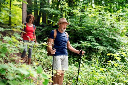 Senior tourist couple with backpacks on a walk in forest in nature. 스톡 콘텐츠