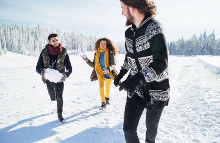 Group of young friends on a walk outdoors in snow in winter forest, having fun. Zdjęcie Seryjne