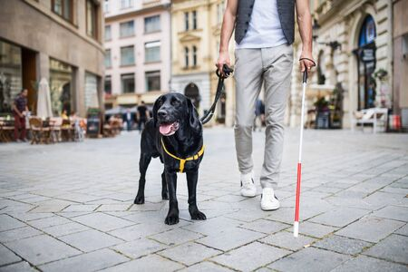 Unrecognizable young blind man with white cane and guide dog in city.