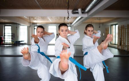 Group of young women practising karate indoors in gym. Imagens
