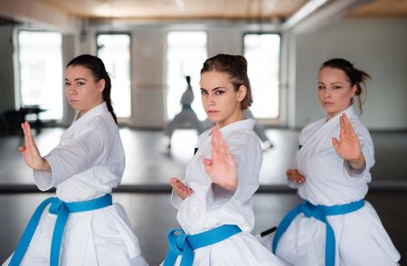Group of young women practising karate indoors in gym.
