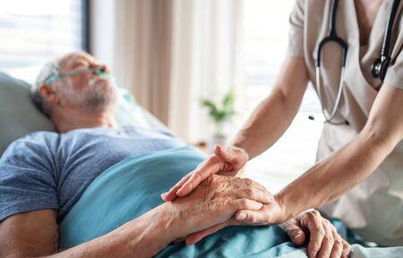 Unrecognizable female doctor examining senior man in bed in hospital. Stock Photo