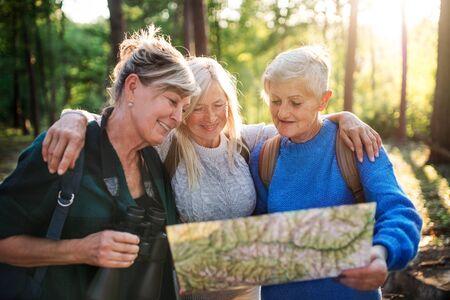 Senior women friends outdoors in forest, using map and binoculars. Standard-Bild - 140462301