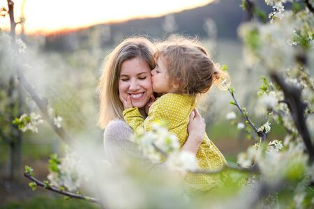 Mother with small daughter standing outdoors in orchard in spring, kissing.