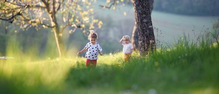 Small children boy and girl playing outdoors in spring nature.