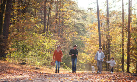 Front view of young family with small children and dog on a walk in autumn forest. Stockfoto