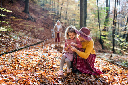 Small girl with mother and grandmother on a walk in autumn forest.