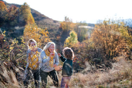 Small girl with mother and grandmother collecting rosehip fruit in autumn nature.