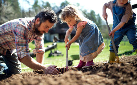 Father with small children working outdoors in garden, sustainable lifestyle concept. Stock Photo