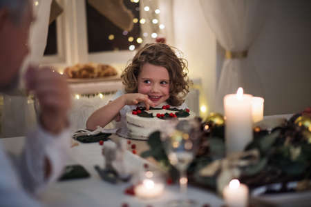 Small girl with family sitting indoors celebrating Christmas together.