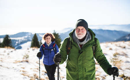 Senior couple with nordic walking poles hiking in snow-covered winter nature. Reklamní fotografie