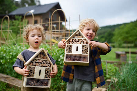 Small boy and girl holding bug and insect hotel in garden, sustainable lifestyle. 免版税图像