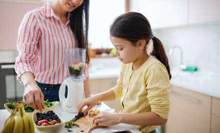 Mother with daughter indoors at home, preparing fruit smoothie drink.
