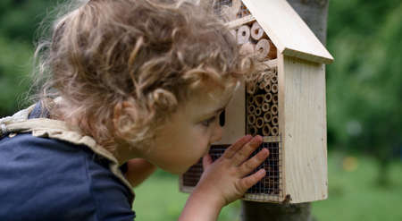 Small girl playing with bug and insect hotel in garden, sustainable lifestyle. Foto de archivo