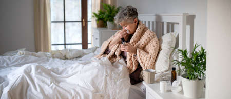 Sick senior woman in bed at home, sneezing and taking medication.