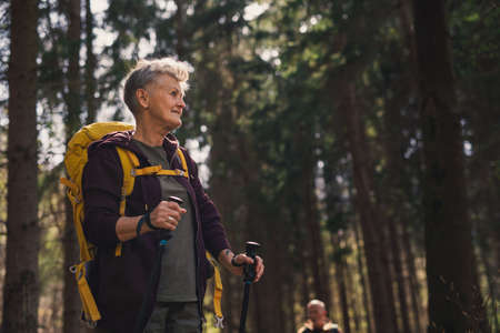 Senior woman hiker outdoors walking in forest in nature, walking. Reklamní fotografie