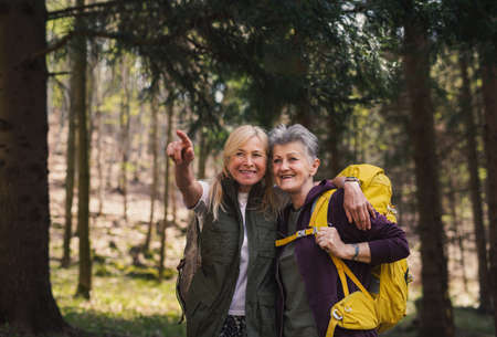 Senior women hikers outdoors walking in forest in nature, talking.