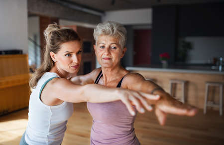 Active senior woman in sportsclothes exercising with her adult daughter indoors at home.