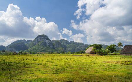 Vinales National Park, UNESCO, Pinar del Rio Province, Cuba, West Indies, Caribbean Central America Imagens