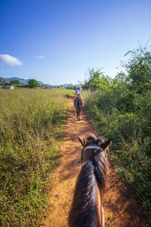 Tourists on a horse tour in Vinales National Park, UNESCO, Pinar del Rio Province, Cuba, West Indies, Caribbean