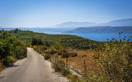 Road through landscape with olive trees, mountains ans Sea of Crete, Greek Islands, Greece, Europe Stok Fotoğraf