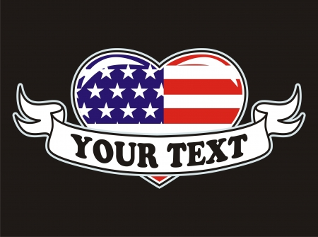 American flag grunge white