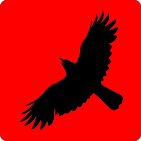 flying eagle: Black silhouette a eagle on a red background