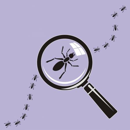 ant Magnifying glass on background  Stock Vector - 19096526