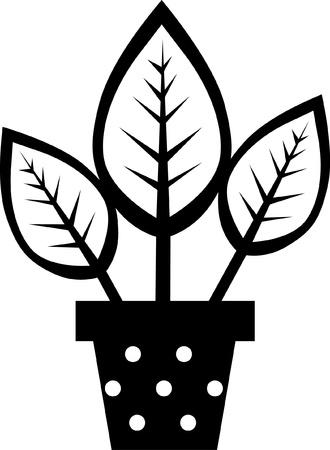 Blumen in Vasen-Kollektion Silhouetten Standard-Bild - 20630012